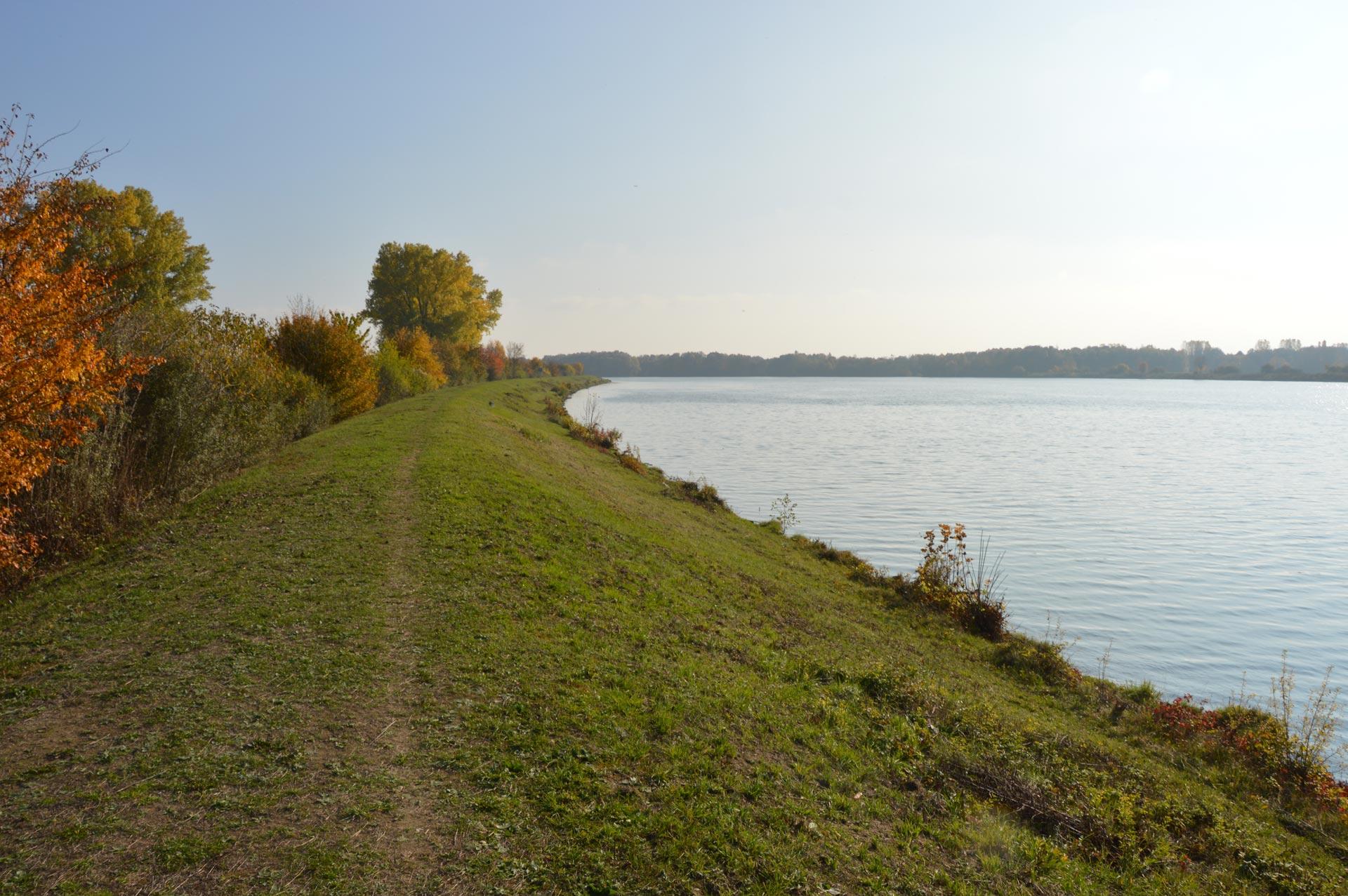 Wanderweg auf dem Damm entlang der Donau Höhe Donaustauf