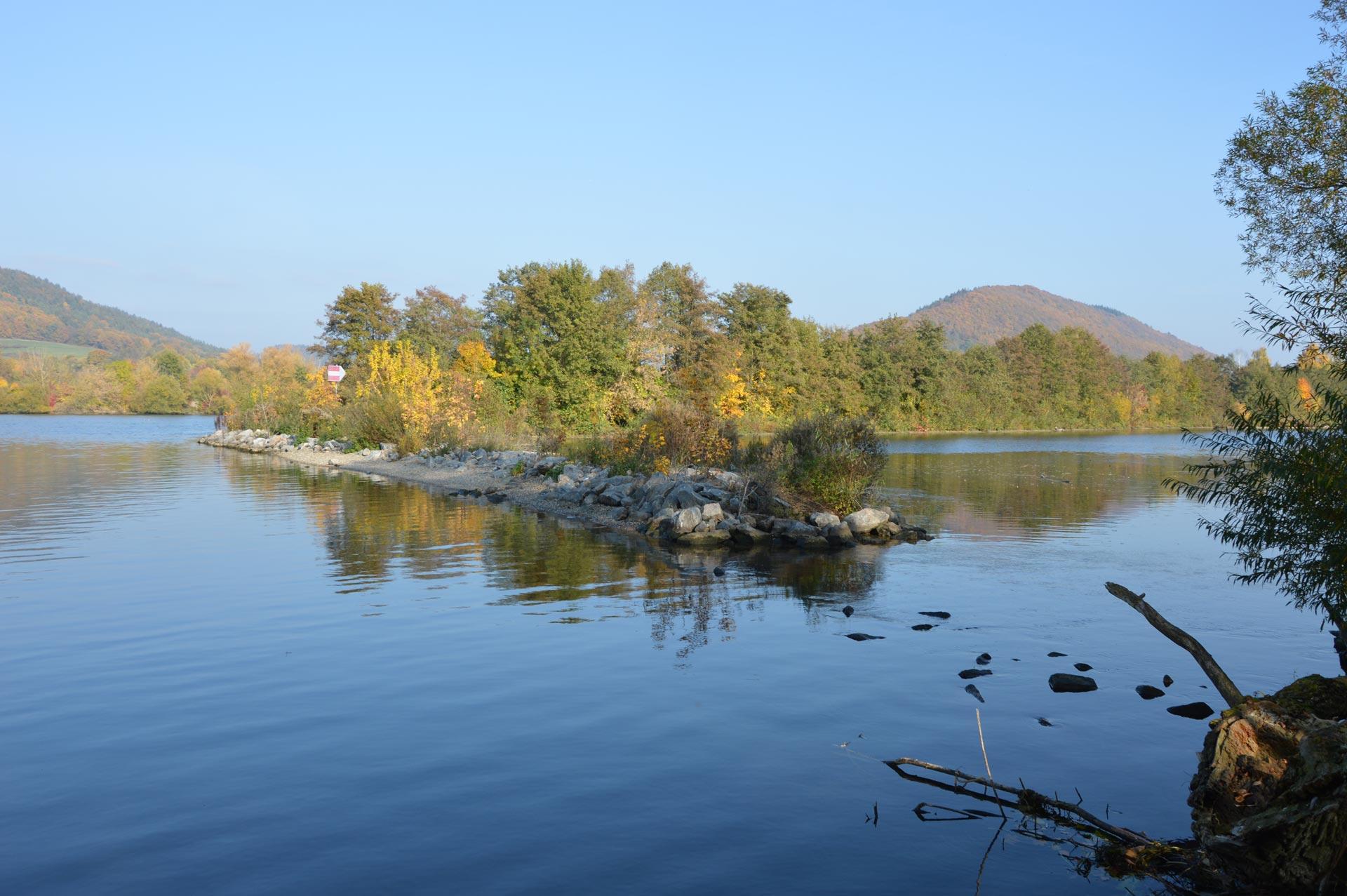Bewaldete Inseln in Donau bei Donaustauf
